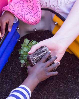 kids_planting_vegetable_garden